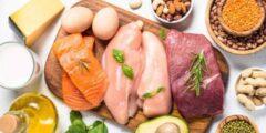 رجيم البروتين يساعدك على حرق الدهون في جسمك