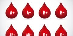 أصحاب فصيلة دم o وأفضل الأغذية الصحية لأجسامهم