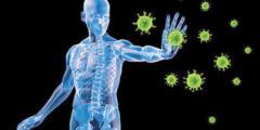 تقوية جهاز المناعة في جسم الإنسان وأشهر العادات الصحية التي تقويه
