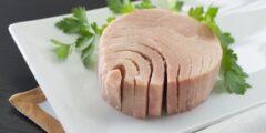 كم تبلغ نسبة البروتين في التونة والأسماك؟