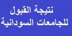 نتيجة القبول للجامعات السودانية 2021 برقم الجلوس