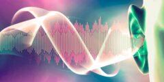 تعريف الموجات فوق الصوتية واستخداماتها وأشكالها