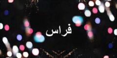 معنى اسم فراس وصفات حاملة هذا الاسم وحكم تسميته في الإسلام