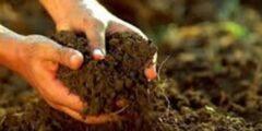 بحث عن مكونات التربة