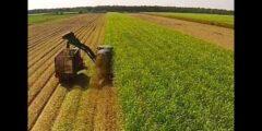 مقومات الإنتاج الزراعي