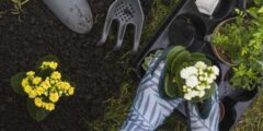 مكونات التربة الزراعية