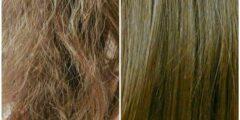 كيفية معالجة الشعر المحروق والتخلص منه والحصول على شعر ناعم