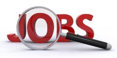 كيف احصل على وظيفة؟ وتصفح إعلانات التوظيف في الصحف والتوظيف