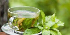 شرب الشاي الأخضر بعد الأكل بكم ساعة يكون؟
