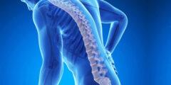 هشاشة العظام الأسباب وطرق الوقاية