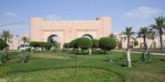 جامعة الملك فيصل عن بعد