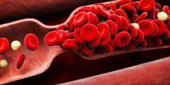 كيفية الوقاية من تخثر الدم