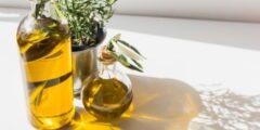 استخدامات زيت الزيتون