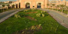 جامعة الملك فيصل بوابة القبول