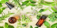 علاج مرض التعفن بالأعشاب